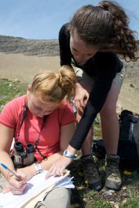 Citizen scientists conduct a mountain goat survey in Glacier N.P.